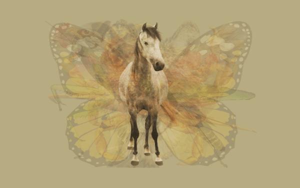 Imagens que representam animais